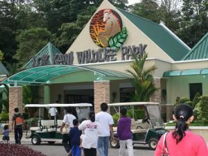 Lok Kawi Wildlife Park Borneo
