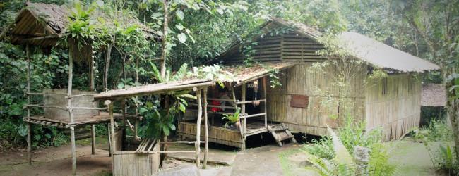 Rungus Long House